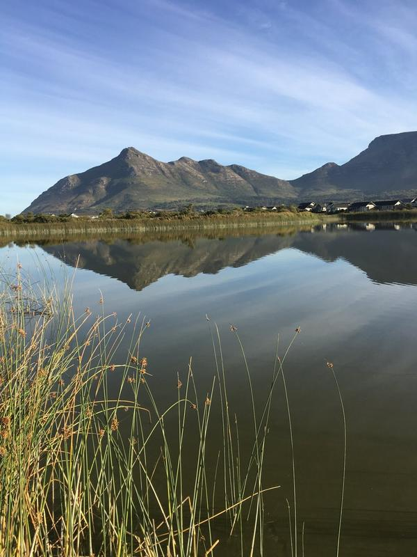 Property For Rent in Lake Michelle Security And Eco Estate, Noordhoek 5